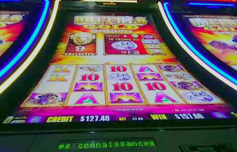 the best canadian online casinos game